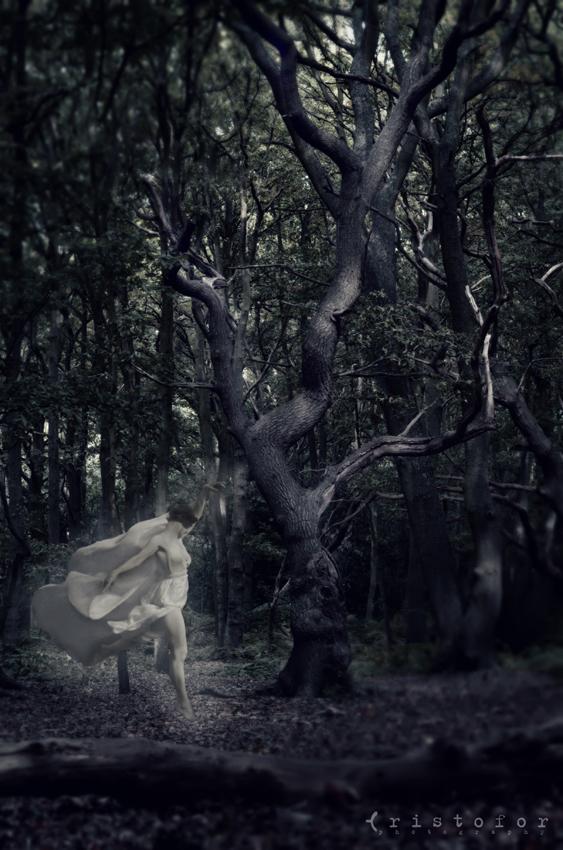 Copyright © 2013, Cristofor Arts