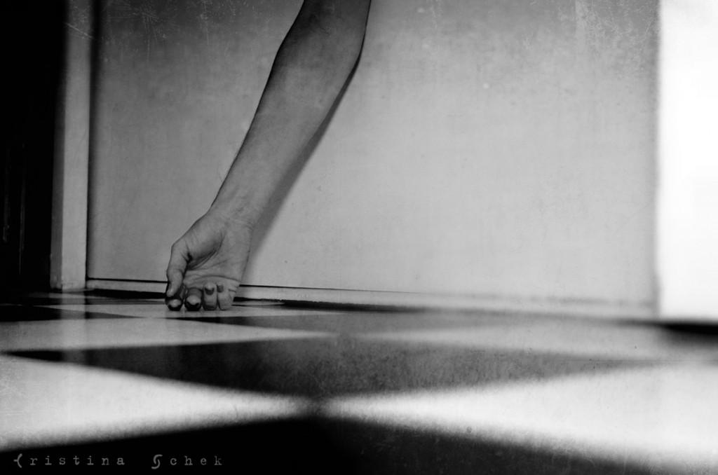 Copyright © 2013, Cristina Schek